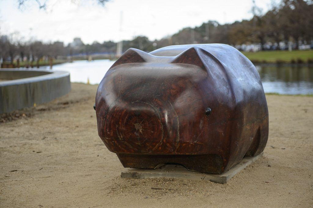 Warin the Wombat image 1561983-1