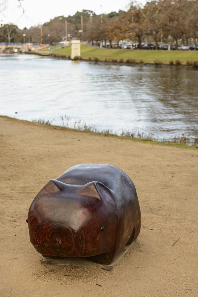 Warin the Wombat image 1561983-3