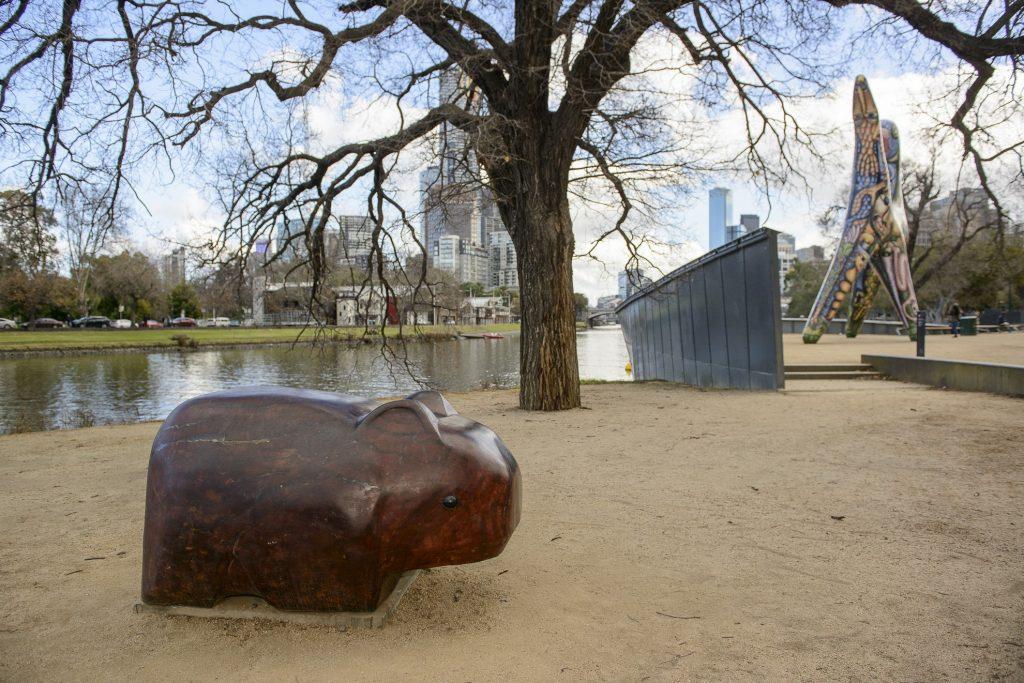 Warin the Wombat image 1561983-4