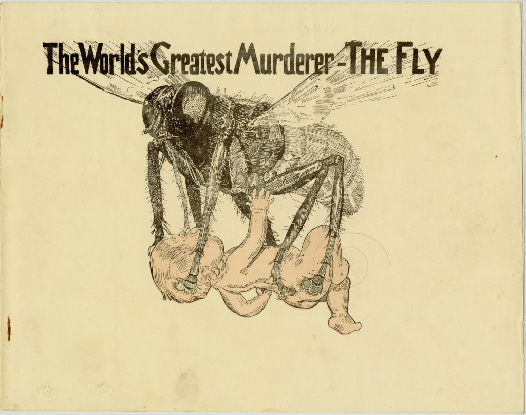 The World's Greatest Murderer – the Fly